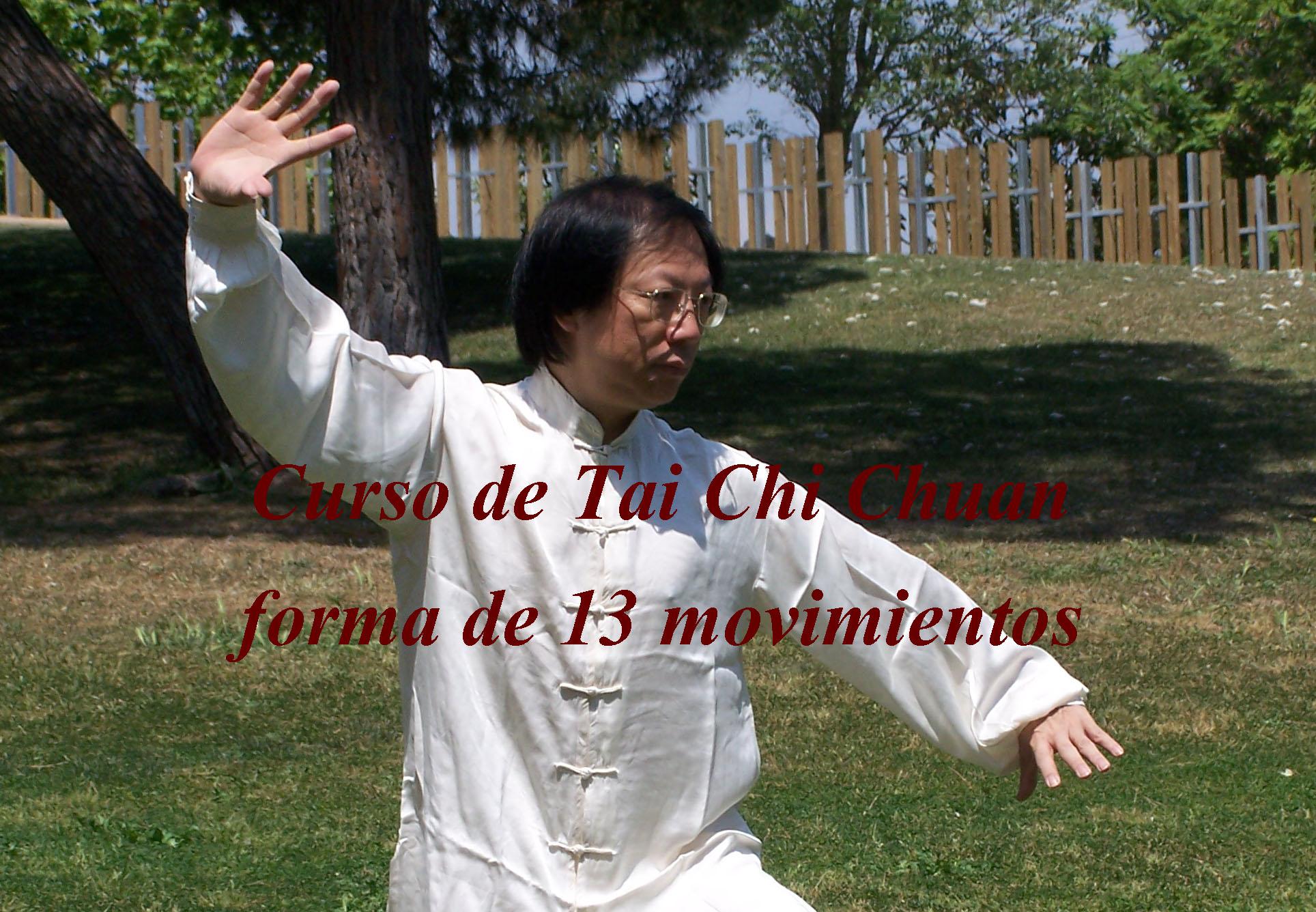 Forma de Tai Chi Chuan de 13 movimientos estilo Yang