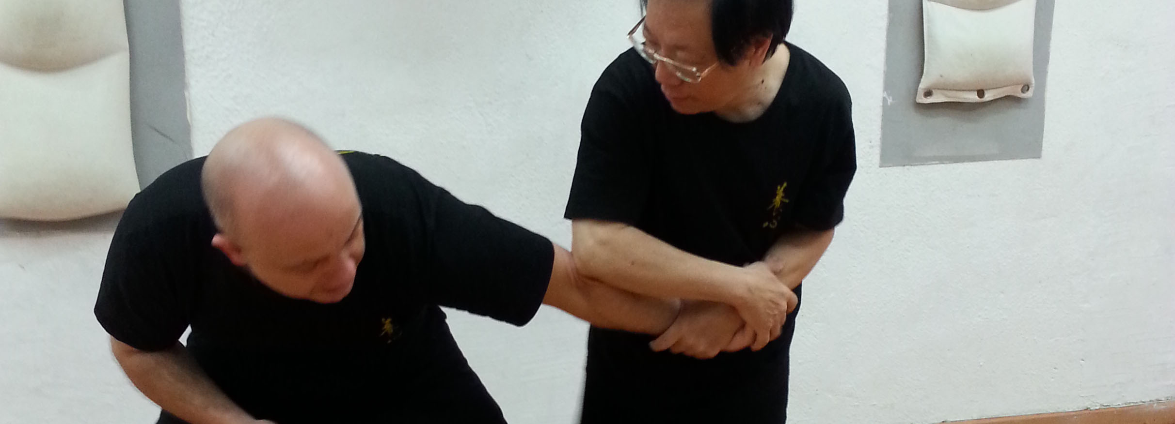 Self Defense Chin Na